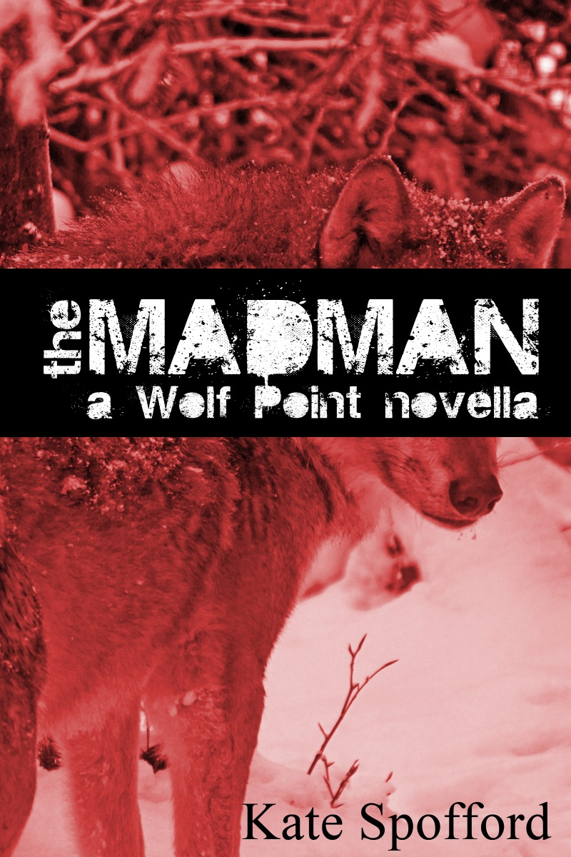 The Madman cover