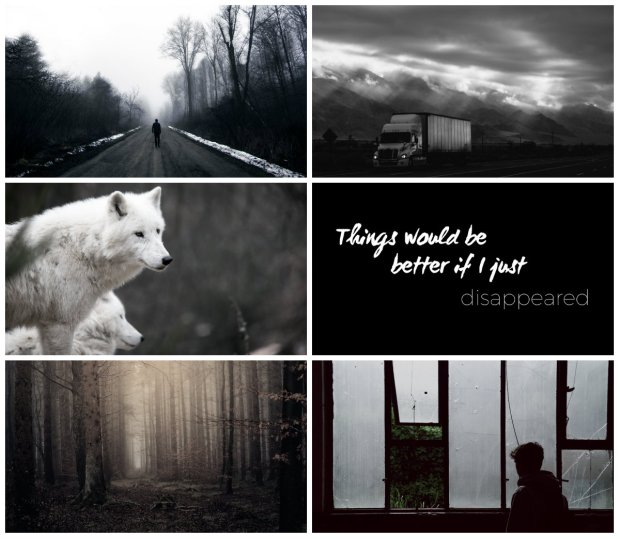 Hitchhikers aesthetics